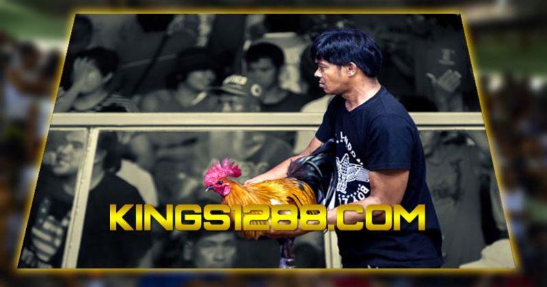 Adu Ayam Online S128
