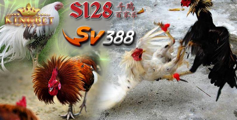 S128 Judi Online