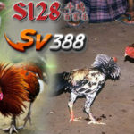 Situs Judi S128